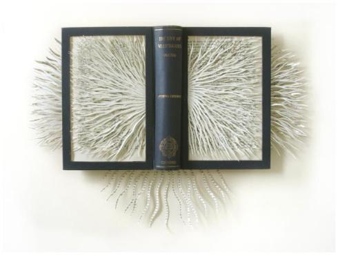 Barbara Wildenboer altered_book