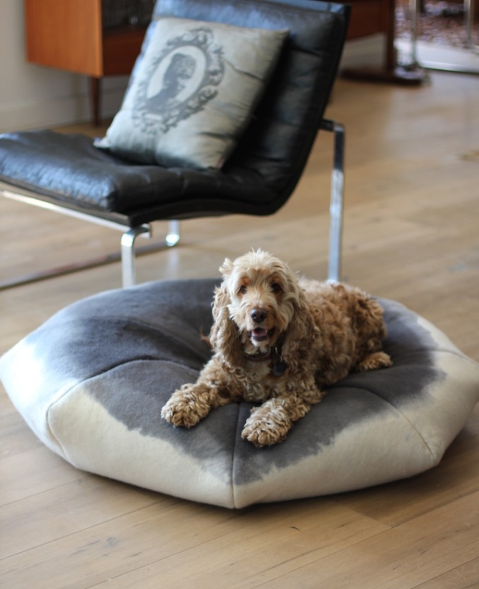Benji + Moon | Handcrafted merino wool ombré doggy day beds