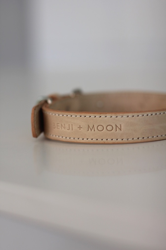 Benji + Moon | Handcrafted leather dog collars