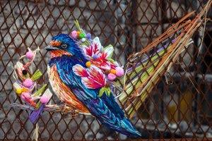 danielle-clough-bird-3